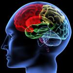 Οι δείκτες ασβεστίου δείχνουν έμφραγμα και εγκεφαλικό