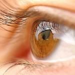 Αποκαθιστούν (μερικώς) την όραση σε ζώα με χρήση κυττάρων από νεκρούς ανθρώπους