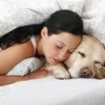 Κοιμάστε αγκαλιά με το ζωάκι σας;